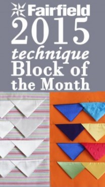 Block of the Month 3