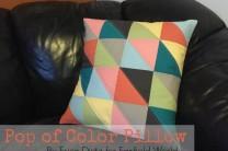 Pop of Color Pillow