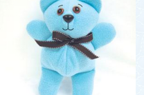 Plush Poly Bear