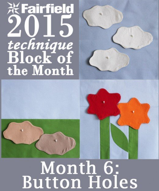 2015 Block of the Month - Month 6