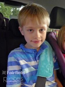 Seatbelt-Sleeve-(3)