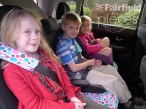 Seatbelt-Sleeve