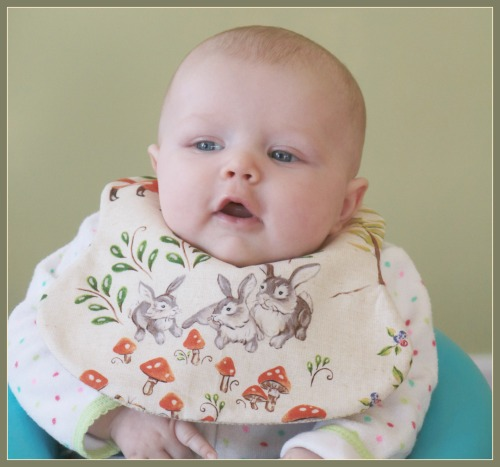 Forest Frolics Baby Bibs