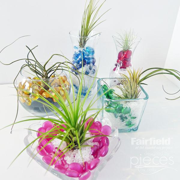 005-Air-Plant-Terrariums
