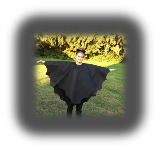 Last Minute Basic Bat Costume