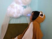 Poly-fil Cloud lanter