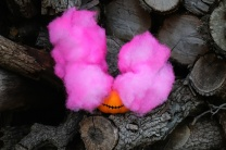 Smoke Bomb Pumpkins DIY